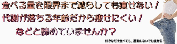 2009y12m14d_080732000.jpg